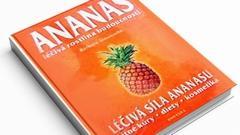 KNIHA - ANANAS | SLEVA 45 %