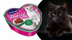 VITAKRAFT CAT-ŽELÉ ZVĚŘINA+BRUSINKY | SLEVA 15 %