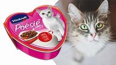 VITAKRAFT CAT-ŠŤÁVA HOVĚZÍ+MRKEV | SLEVA 15 %