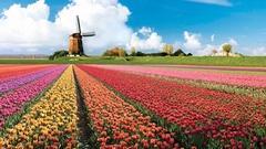 Květinový park Keukenhof + Amsterdam | SLEVA 20 %